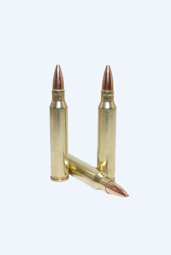 T1 Legacy .223 Remington 55 GR